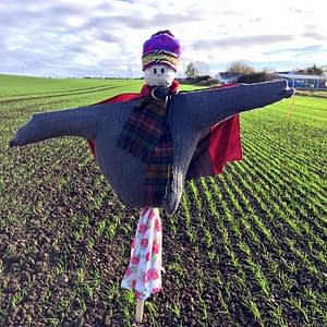 Scarecrow built by Cubs