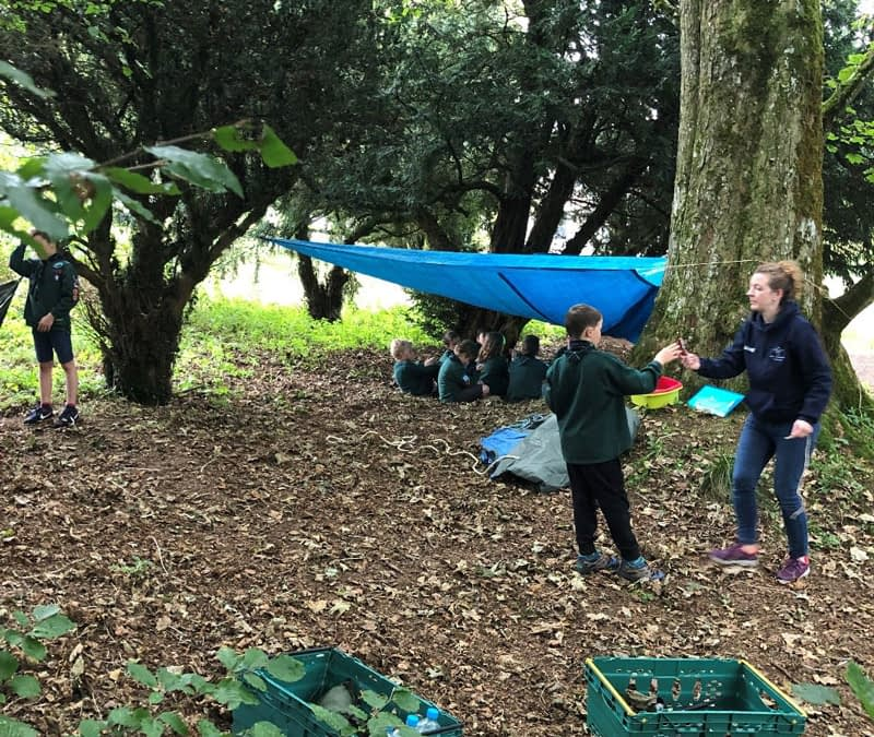 Cubs and Beavers have fun outdoors