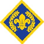 Chief Scout's Award Platinum logo