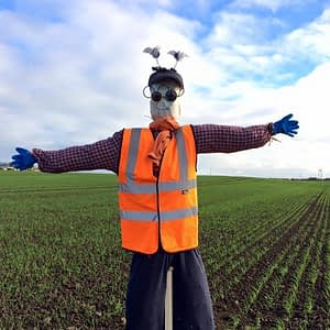 Scarecrow in field