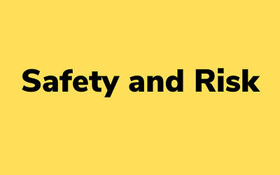 Safety and Risk